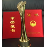 Certificate Trophy